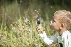 Young researcher explores nature with a magnifying glass