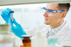 Young Researcher Focused on Work. Concentrated young researcher wearing safety goggles and rubber gloves inspecting artificial meat sample while working on Royalty Free Stock Photos