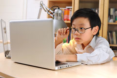 Young researcher with glasses on looking at computer Royalty Free Stock Photo