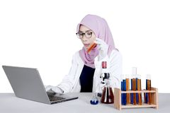 Young researcher using laptop on table. Young female researcher using a laptop computer on the table while holding a test tube, isolated on white background Royalty Free Stock Images