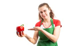 Young retail saleswoman presenting and holding fresh red pepper. Young retail saleswoman or worker presenting and holding fresh red pepper as supermarket royalty free stock photos