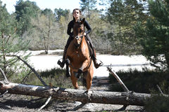 Young rider in forest Stock Photo