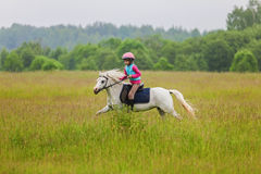 Young rider galloping on horseback across the field Outdoors Royalty Free Stock Images