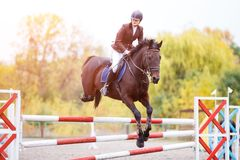 Young rider girl on bay horse jumping over barrier Stock Images