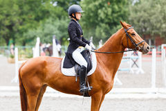 Young rider girl on horse at dressage competition Stock Image