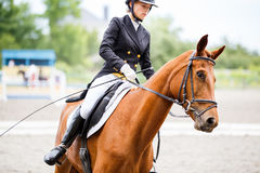 Young rider girl on horse at dressage competition Royalty Free Stock Photo