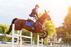 Young rider girl on horse show jumping competition Stock Photos