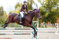 Young rider girl jumping over barier on her course Royalty Free Stock Image