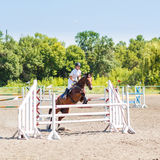 Young rider girl jumps on show jumping competition. Young rider girl in white shirt on bay horse jumping over hurdle on show jumping competition Royalty Free Stock Image