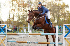 Young rider girl at show jumping. Jump hurdle. Young rider girl at show jumping. Horse rider jumps over hurdle Royalty Free Stock Photos