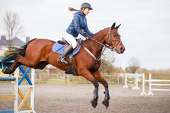 Young rider girl at show jumping. Jump hurdle. Young rider girl at show jumping. Horse rider jumps over hurdle Royalty Free Stock Images
