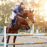 Young rider girl at show jumping. Jump hurdle. Young rider girl at show jumping. Horserider jumps over hurdle Stock Image
