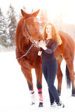 Young rider girl standing with horse in sunbeams. Young rider girl standing with bay horse in sunset beams Stock Photo