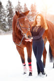 Young rider girl standing with horse in sunbeams. Young rider girl standing with bay horse in sunset beams Stock Image