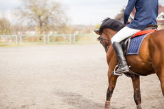 Young rider on horse on field with copy space. Young horseback rider on field with copy space aside. Equestrian competition concept background Royalty Free Stock Photography