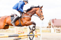 Young rider on horse on show jumping competition. Young rider on bay horse on show jumping competition Royalty Free Stock Image