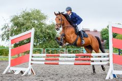 Young rider man jumping on horse over obstacle. On show jumping competition Royalty Free Stock Photography