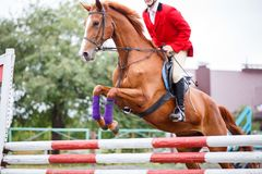 Young rider man jumping on horse over obstacle. On show jumping competition Stock Image