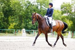 Rider woman on her course in dressage competition. Young rider woman on her course in dressage competition advanced test Royalty Free Stock Photos