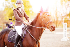 Young rider woman riding horse at the competition Royalty Free Stock Photos