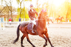 Young rider woman riding horse at the competition Stock Photos