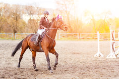 Young rider woman riding horse at the competition Stock Images