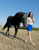 Young riding girl. Young girl riding a black stallion in a field Stock Photo