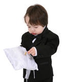 Young ring bearer Stock Image