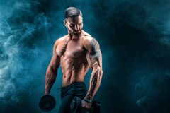 Young ripped man bodybuilder with perfect abs, shoulders,biceps, triceps and chest posing with a dumbbell. Smoke studio shoot Royalty Free Stock Photography
