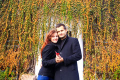 Young romantic couple  in autumn. Young men and women romantic couple in autumn Stock Photography