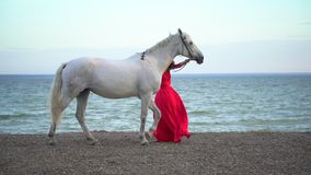 Young romantic girl in red dress walking with white horse against the sun on the background of the sea. Woman Rider with. Her stallion in beach. Slow motion stock video footage