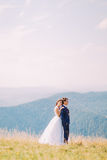 Young romantic wedding couple posing on sunny grass field with distant forest hills as background royalty free stock images