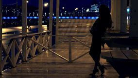 Young romantic woman standing on the terrace in Moscow park at night Royalty Free Stock Photos