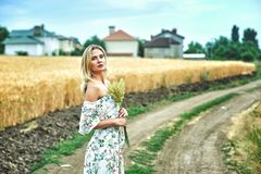 Young woman in casual clothes for a walk in a field of wheat. Young romantic woman in a wheat field Stock Photos