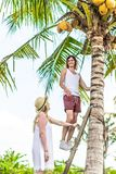 Young romatic couple tourist under the coconut palm. Bright green and yellow picture. Bali island. Indonesia. royalty free stock photos