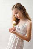 Young rose Royalty Free Stock Photo