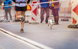 Young runner Stock Photography