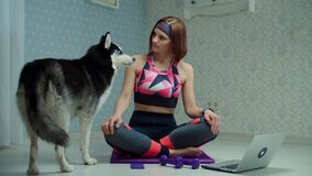Young 30s woman in sportswear making yoga and meditation exercises on fitness mat and Siberian Husky dog interrupting
