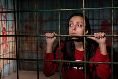 Young sad female victim imprisoned in a metal cage with a blood. Splattered wall behind her sitting in terror awaiting a fate Royalty Free Stock Image