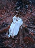 A young, sad princess with very long hair sits on a large stump of an old tree and waits for her prince. The girl has a. Vintage dress and a diadem. Artistic royalty free stock photography