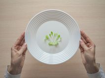 Young salad on a plate. Humorous concept of a diet. Young salad on a plate. Humorous concept of a diet Stock Photos