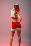 Young Santa woman sexy clothes. Royalty Free Stock Photo