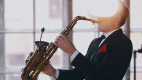 Young saxophonist play on golden saxophone. Live performance. Jazz artist. stock video footage