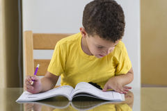 Young Schoolboy Studying Hard Royalty Free Stock Photos