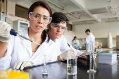 Young science students working. In a laboratory Royalty Free Stock Photos