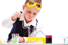 Young scientist Royalty Free Stock Image