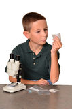 Young Scientist Royalty Free Stock Photography