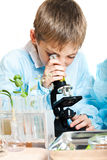 Young scientist Stock Images