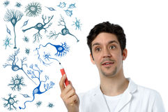 Young scientist or medical specialist explains about neurons. Young scientist or medical specialist explains about different types of brain cells Stock Image