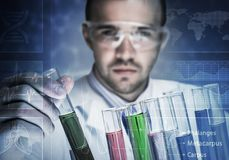 Portrait of concentrated male scientist working with reagents in laboratory Stock Photo